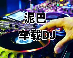 车载DJ《一生何求》《笑看风云》《你是我的爱也是我的缘》